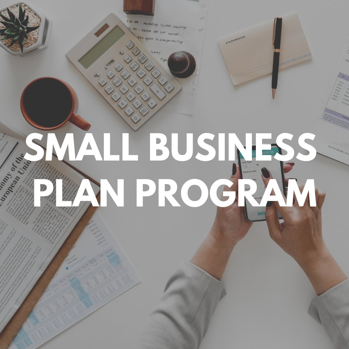 Small Business Plan Program