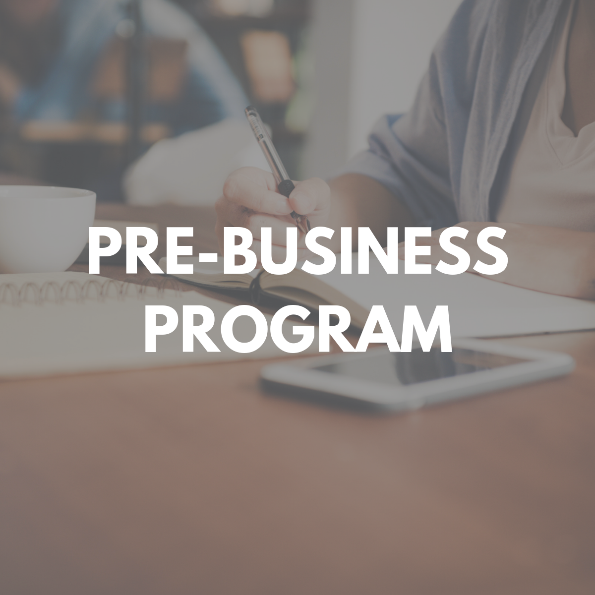 Pre-Business Program
